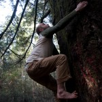 Jon climbs the famous 'tree 9' at UCSC.