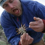 Jon was pricked by a jumping choya – a type of cactus that falls off the plant and 'jumps' on passing animals or humans.