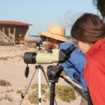 Jon and Natasha look through the scope at ospreys nesting by the ocean at San Ignacio Lagoon.